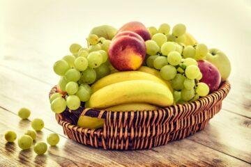 les modèles de corbeille de fruit